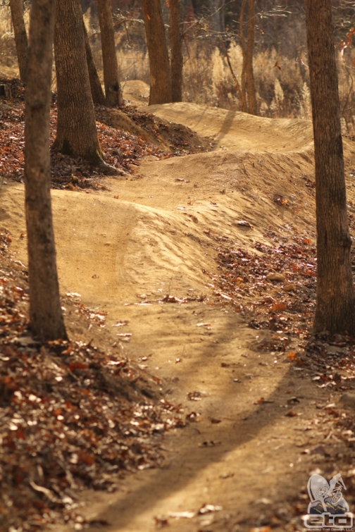 New trail in Briar Chapel