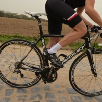 Taking Care of Saddle Sores