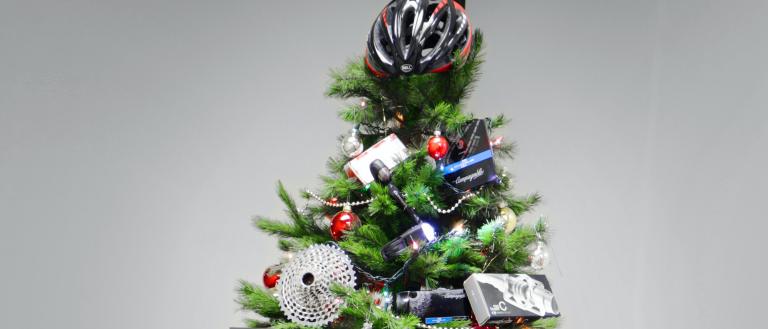 bike_tree-top